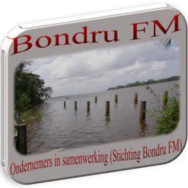 cropped-bondru-fm-logo2016hjgill-11.jpg